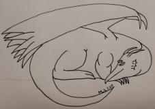 sleeping dragon70